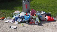 Usuwamy śmieci – Jak skutecznie zlecić wywóz